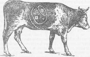 Применение овса при циррозе печени