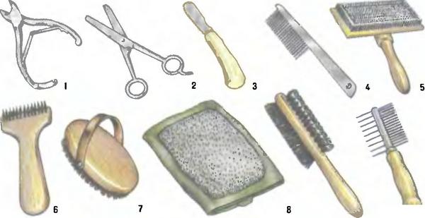 Фото предметов для ухода за животными